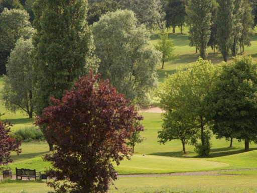 Three Rivers (King's Course) 3